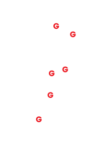 Goleman-location-Around New Zealand